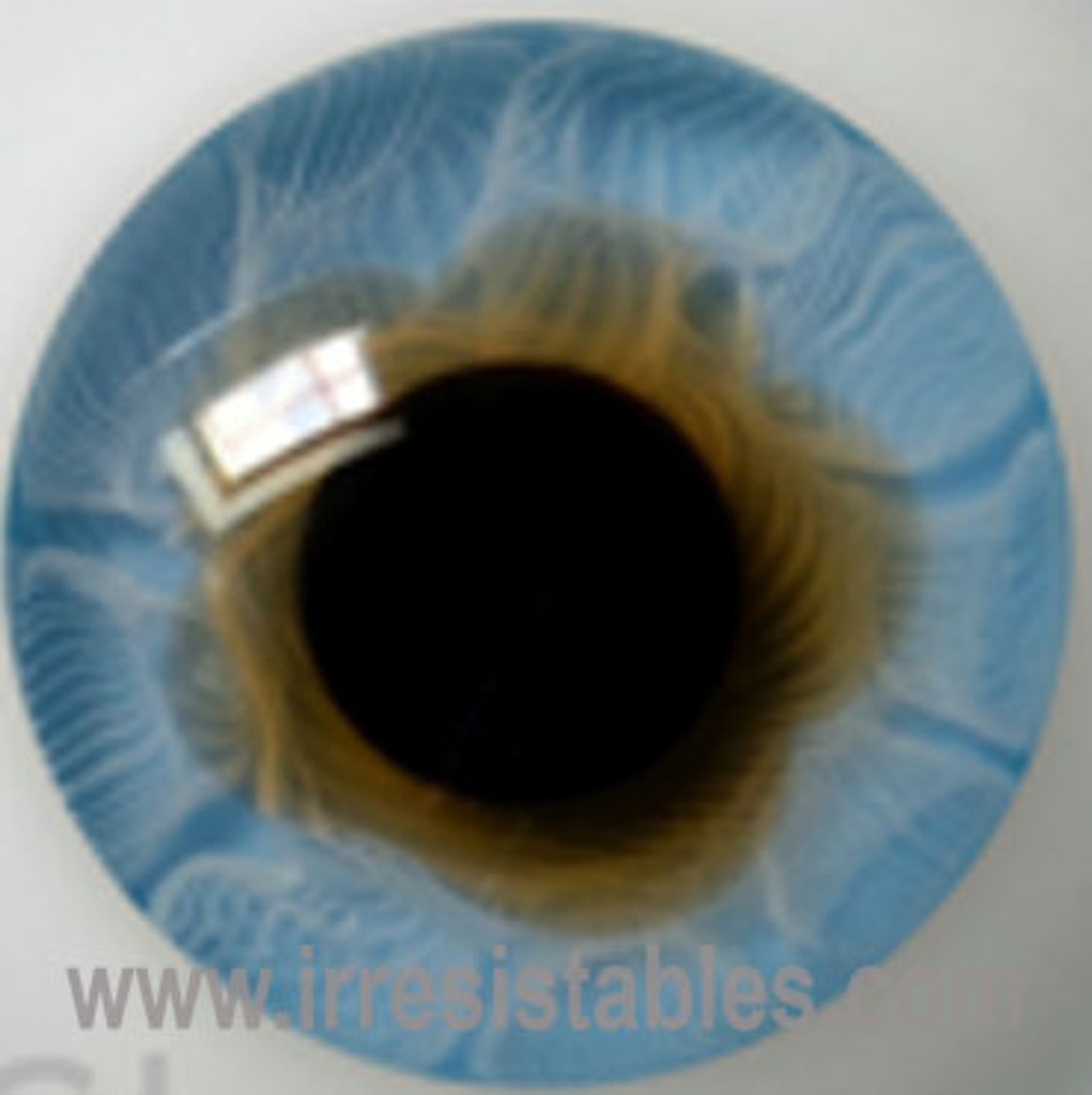 German Glass Eyes: Solid Half Round Flat Back Middle Blue #32411