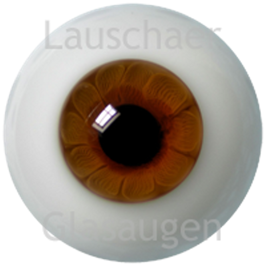 German Glass Eyes: Solid Half Round Flat Back Hazel #32522