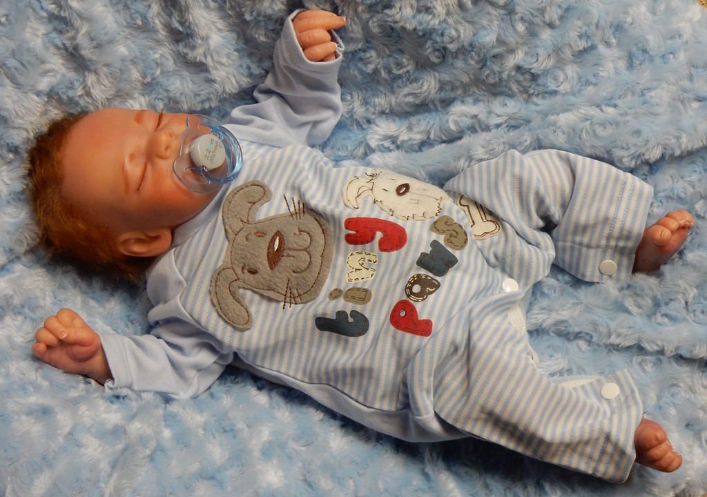 Henry  Reborn Finished Baby Boy Collectors Doll sculpted by Jamie Lynn Powers