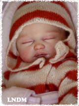 Carina Reborn Vinyl Doll Kit by Sheila Michael