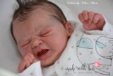 Edwin Reborn Vinyl Doll Kit by Elisa Marx