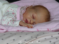 Hope Reborn Vinyl Doll Kit by Sabine Hansen - LDC