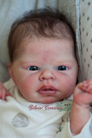 Jamie Reborn Vinyl Doll Kit by Adrie Stoete  Includes Body and New Limbs!