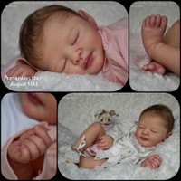 Dallas Reborn Vinyl Doll Kit by Dawn Murray McLeod