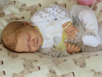 Angeli Reborn Vinyl Doll Kit by Elisa Marx