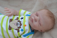 Benji Reborn Vinyl Doll Kit by Marita Winters
