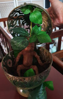 Agora the Mandrake by Jade Warner Silicone Full Body Doll Kit Unpainted