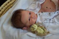 Prince Henry Reborn Vinyl Doll Kit by Andrea Arcello