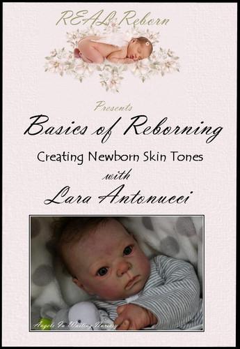 Beginner Basics DVD By Lara Antonucci
