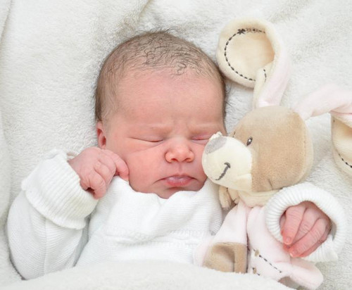 Adelina Vinyl Reborn Doll Kit by Elisa Marx