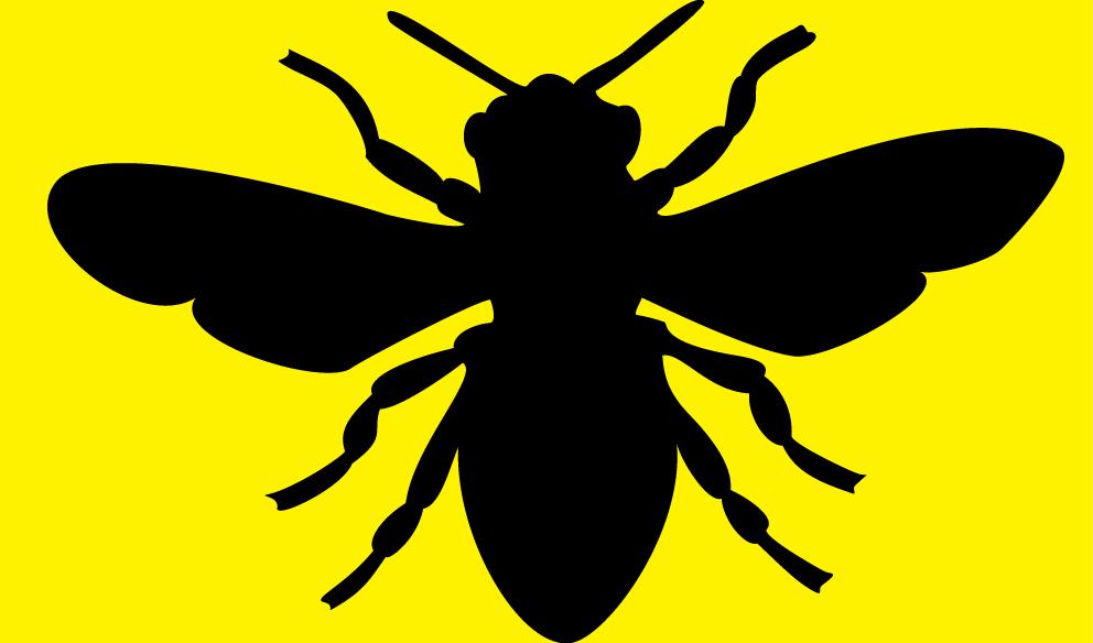 bee-yellow.jpg