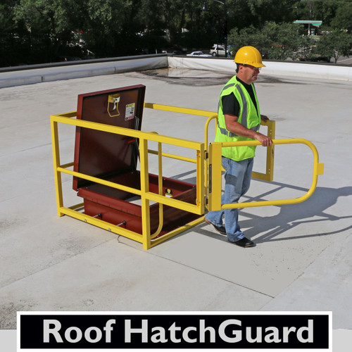 """Roof HatchGuard 42"""" x 42"""" with 42"""" Gate"""