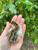 15 Guinea Keets (Hatchery Choice) Shipped Only