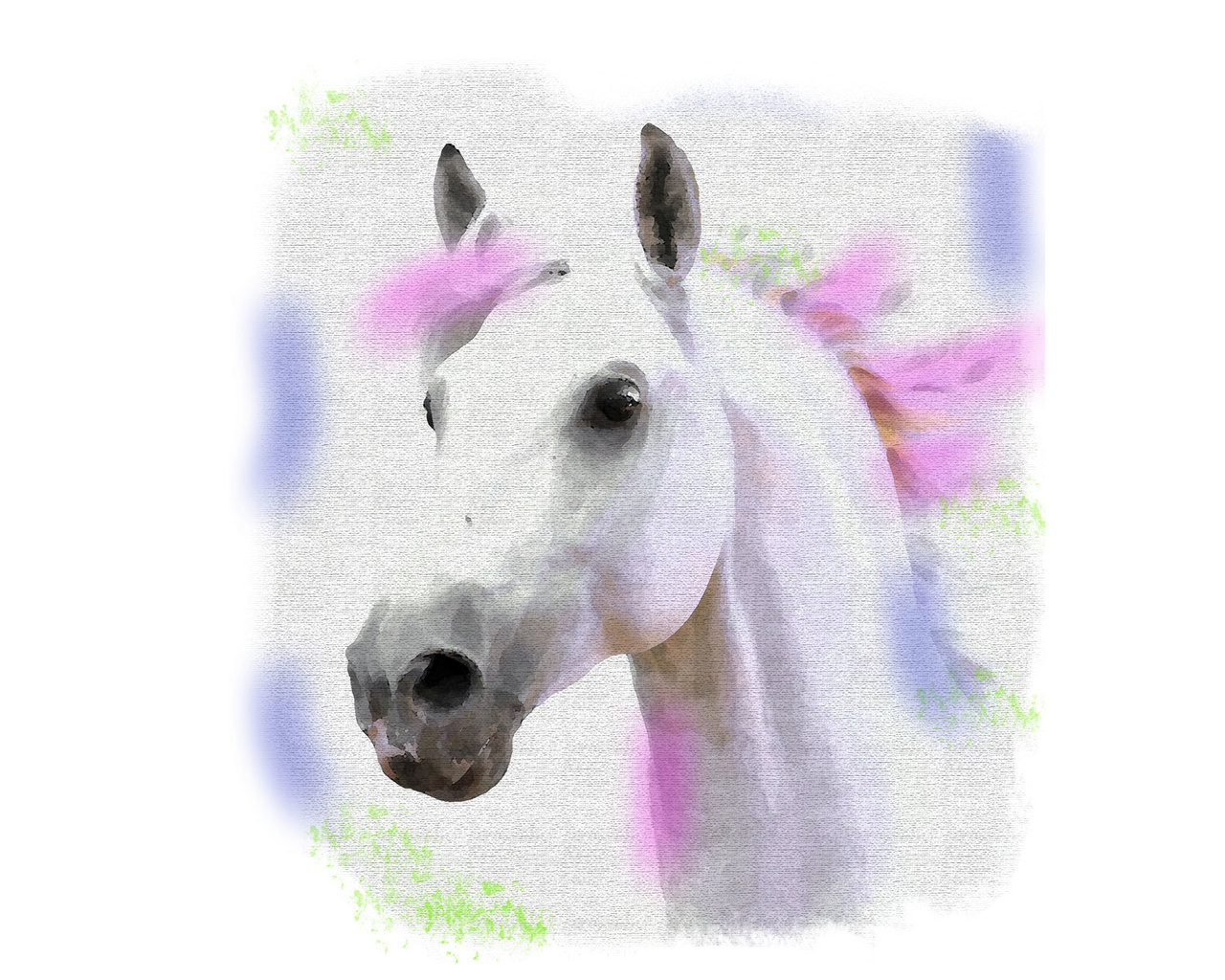 Watercolor Horse Svg Digital File
