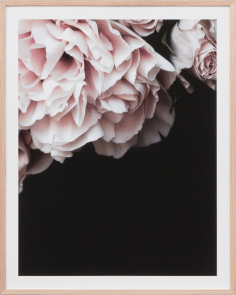 Rose Noir 2 | Print Decor