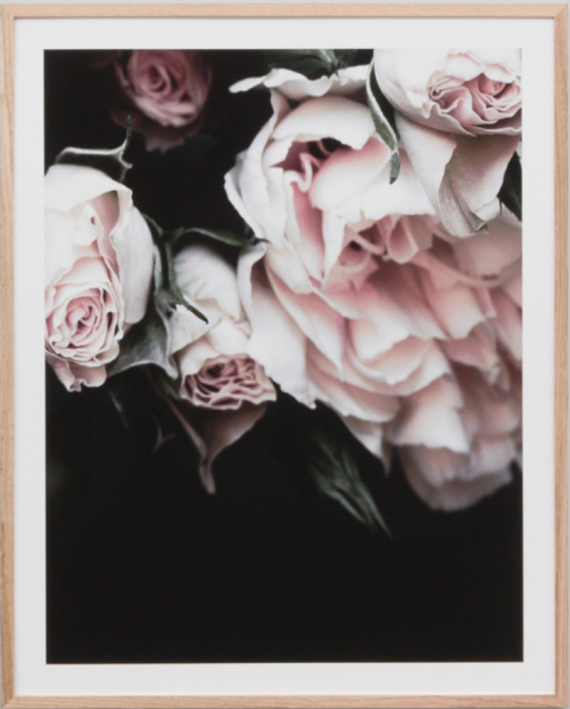 Rose Noir 4 | Print Decor
