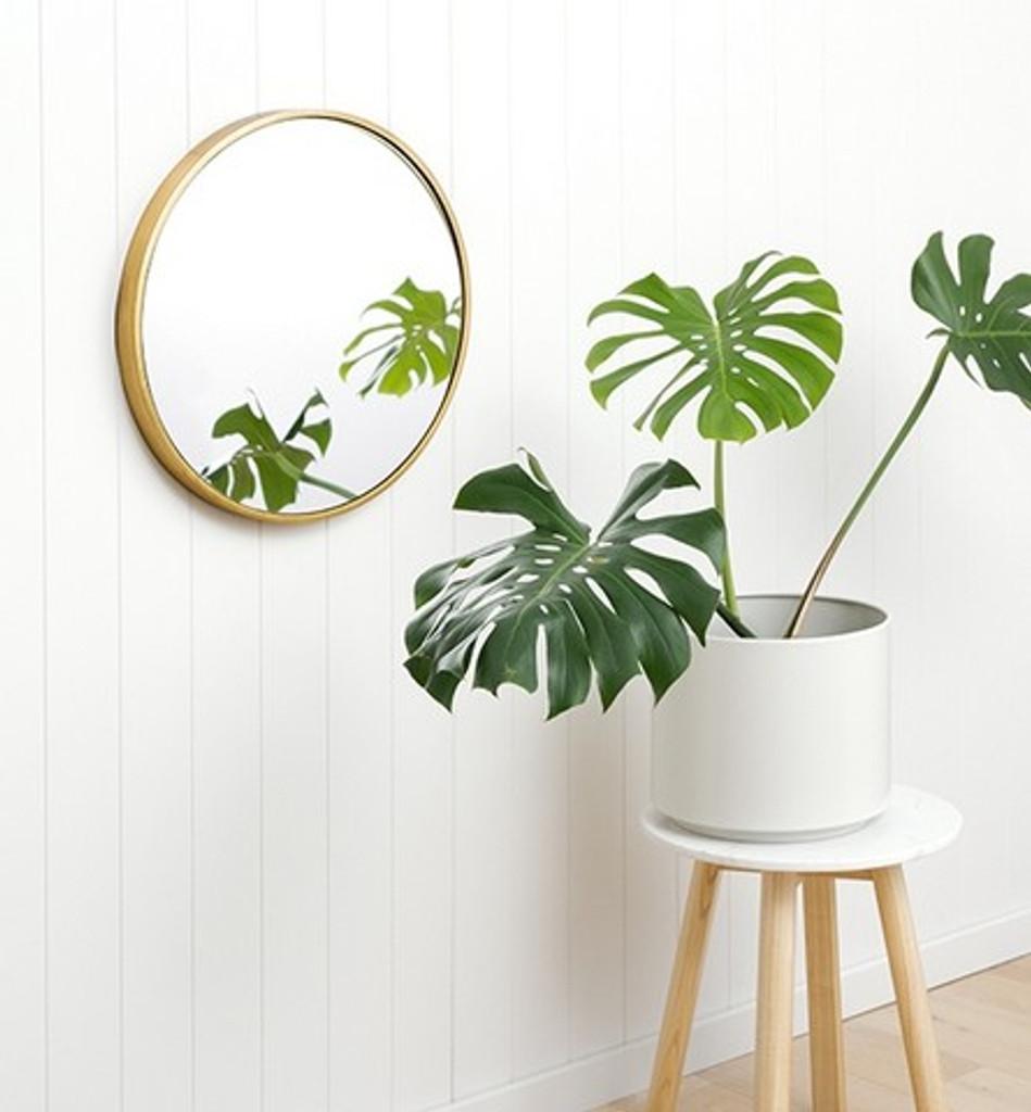 Small Modern Round Brass Mirror, in a room