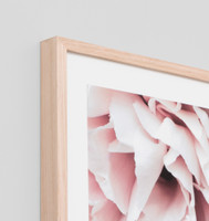 Rose Noir 2 | Detail | Print Decor