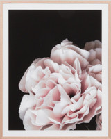Rose Noir 3 | Print Decor