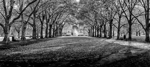 Photography | Carlton Gardens | Wide Format | by Nick Psomiadis