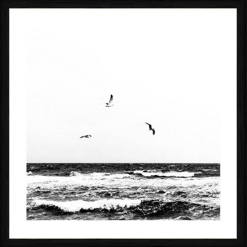 Birds at the beach   Black frame