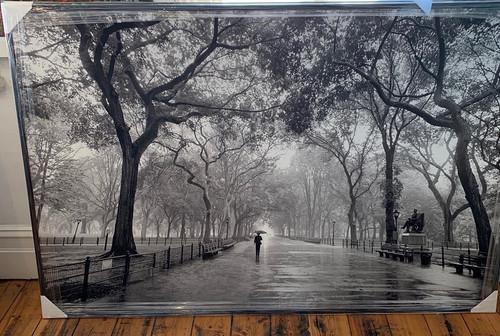 Poets Walk, Central Park, NY
