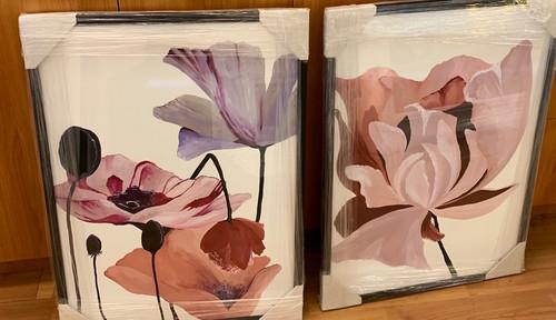 A pair of framed flower prints, Danelle Messaike.