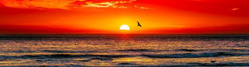 Photography | Gunnamatta Sunset | Nick Psomiadis