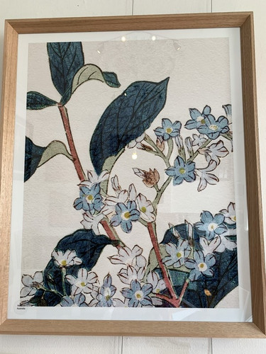 Oak Framed Floral Print 2