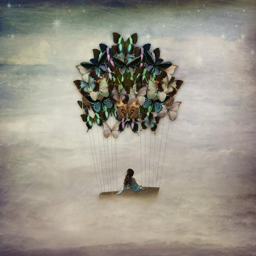Blissful Drift | Kellie North