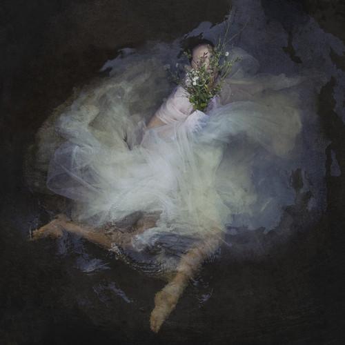 Sound of Silence V | Kellie North
