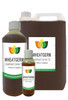 WHEATGERM OIL UNREFINED Vegan - Cold Pressed (Massage Carrier Base Aromatherapy)