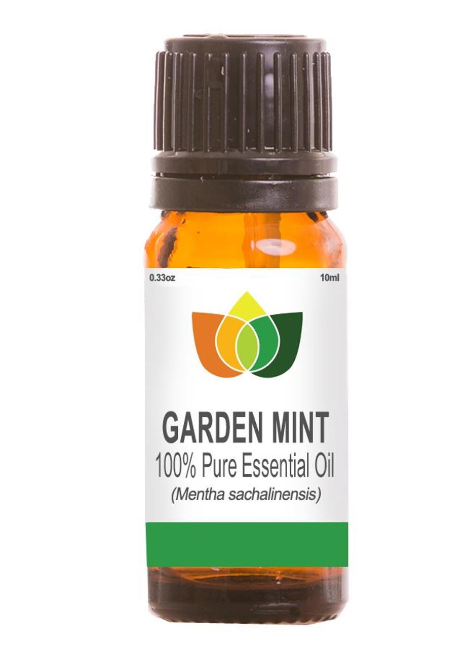Garden Mint Essential Oil Pure, Natural, Vegan Mentha Sachalinensis