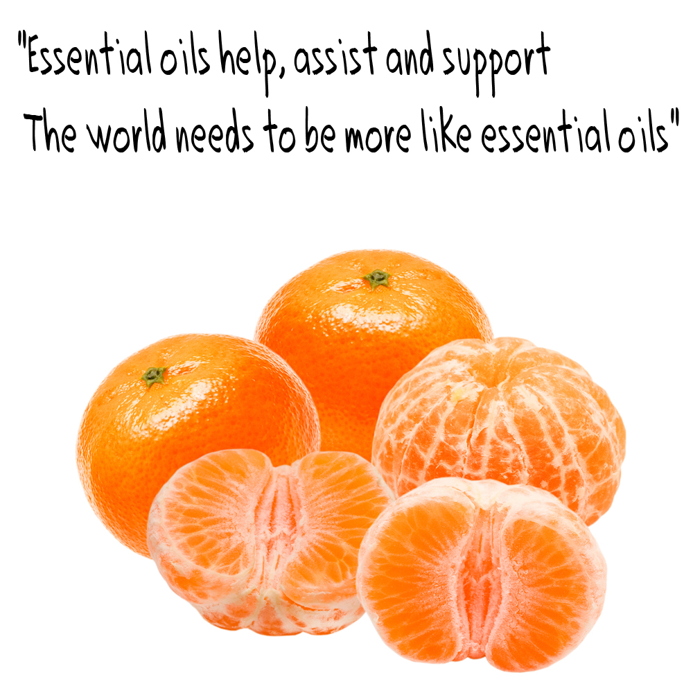 C:\Users\James\Desktop\Essential Oil top.jpg
