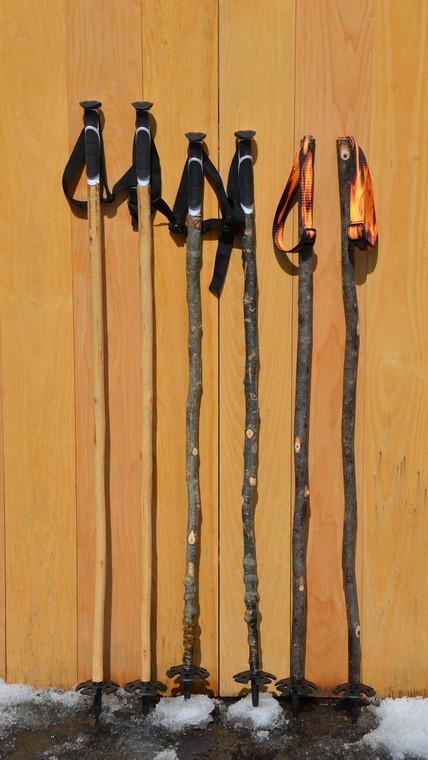 Sapling Ski Poles