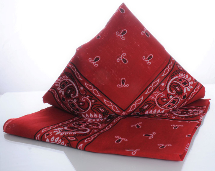 Train Engineer Bandana - RED