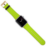 Apple Watch Band (44,42,40,38mm) Vegan Leather Strap Gold Buckle, iWatch Light Green   iCoverLover