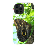 For Apple iPhone 12 Pro Max Case, Tough Protective Back Cover, Butterfly Tree | iCoverLover Australia
