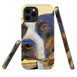 For Apple iPhone 12 Pro Max Case, Tough Protective Back Cover, staffy sceptical | iCoverLover Australia