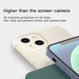 For iPhone 13 Pro Max, 13, 13 Pro, 13 mini Case, Liquid Silicone Flannel Lined Back Cover, White   Plastic Cases   iCoverLover.com.au