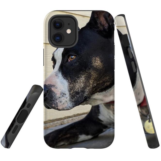 For Apple iPhone 12 Pro Max/12 Pro/12 mini Case, Tough Protective Back Cover, staffy portrait | iCoverLover Australia