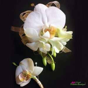 White Phalaenopsis and Dendrobium Orchid 2 Corsage and Boutonniere