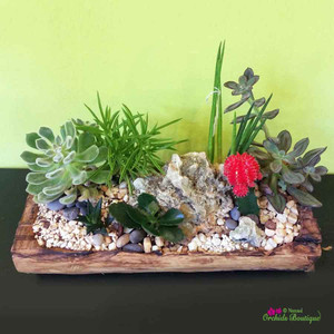 Into The Woods Rustic Terrarium