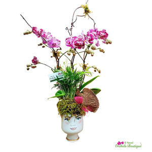 Face Time Orchid Arrangement