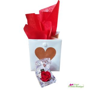 Surprise Rose Gift