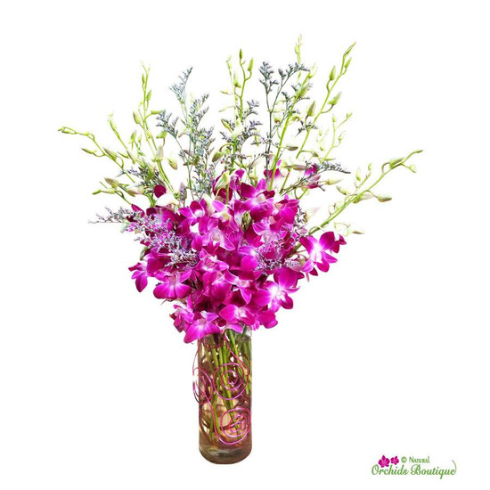 Exotic Dendrobium Orchid Arrangement
