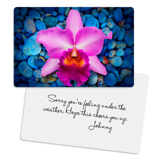 Pink Cattleya Rejuvenate Metal Greeting Card