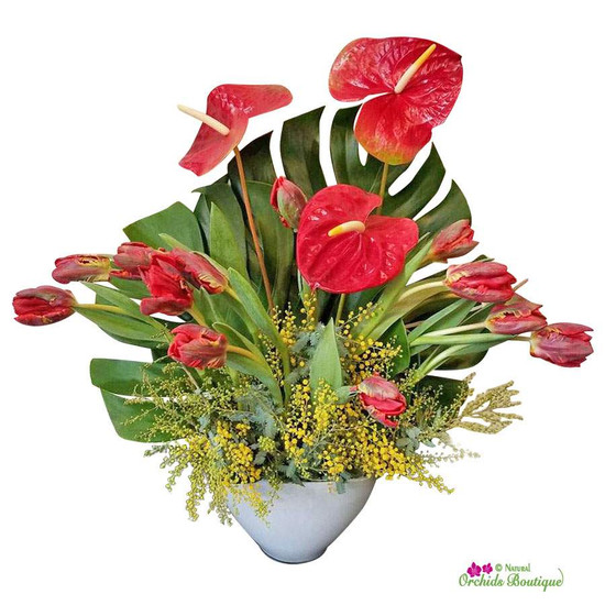 Red Tulips and Anthurium Mixology Flower Arrangement