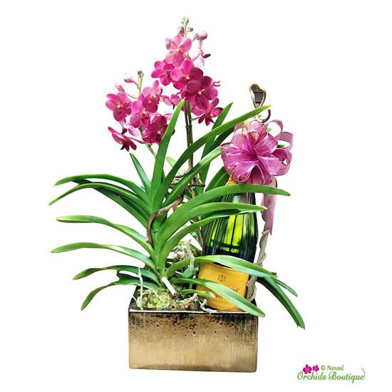 Exotic Modern Vanda Orchid Mix Arrangement