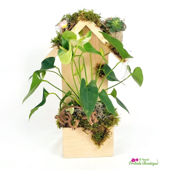 Assorted Foliage In A Sophisticated Birdhouse